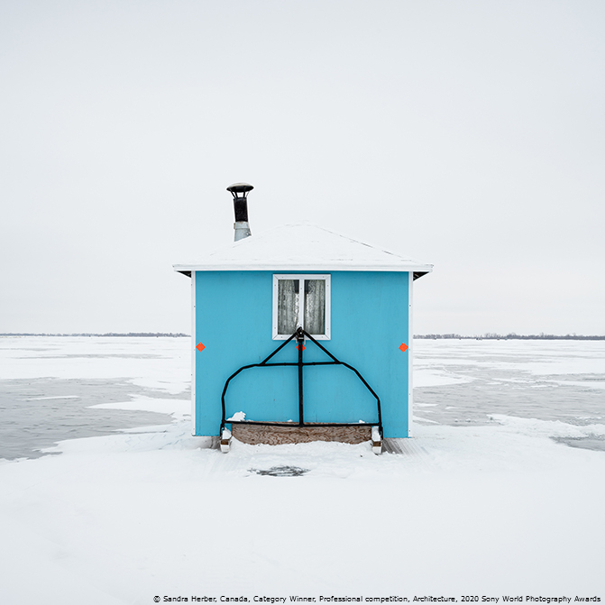 Победители Sony World Photography Awards 2020